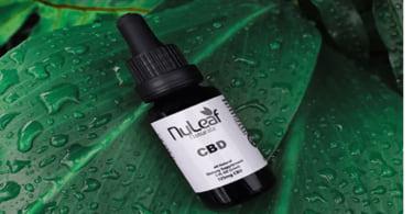 NuLeaf Naturals CBD Oil Review – Organic CBD Oil Supplier