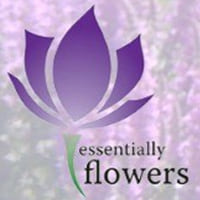 Essentially flowers Coupons & Promo codes