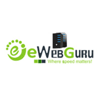 eWebGuru Coupons & Promo codes