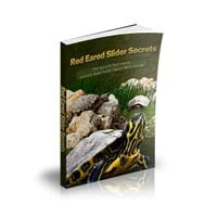 Red Eared Slider Secrets Coupons & Promo codes
